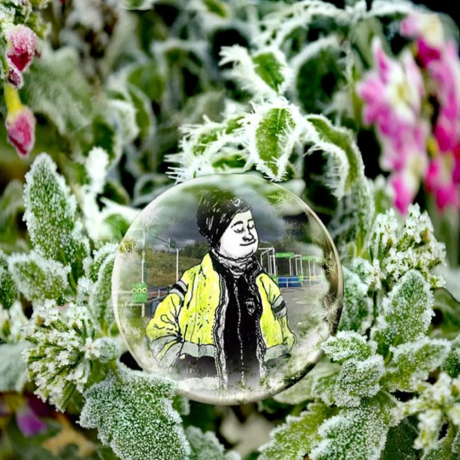 Bokomslaget från boken Återvinningscentralen av Ulrika Linder inuti en iskula bland frosttäckta gröna blomblad