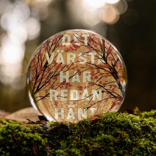 Omslaget till boken Det värsta har redan hänt av Marta Söderberg inuti en liten glaskula som är på en bädd av mossa.